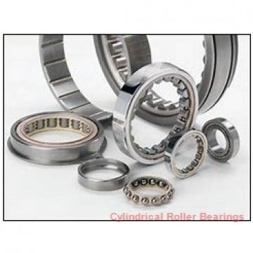 3.74 Inch | 95 Millimeter x 6.693 Inch | 170 Millimeter x 1.693 Inch | 43 Millimeter  CONSOLIDATED BEARING NU-2219  Cylindrical Roller Bearings